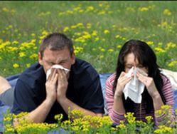 Сиптомы аллергического ринита